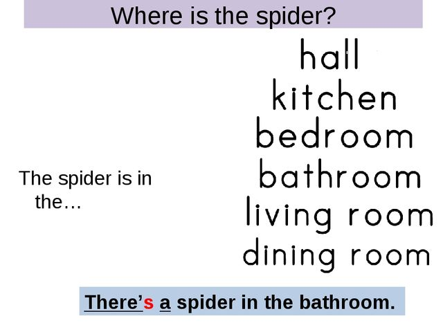 Where is the spider? The spider is in the… There's a spider in the bathroom.