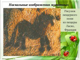 Наскальные изображения животных Рисунок пещерного пони из пещеры Ласко, Фран