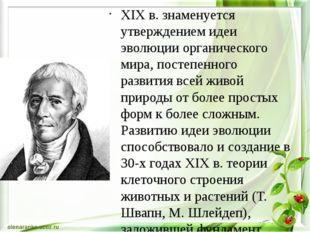 XIX в. знаменуется утверждением идеи эволюции органического мира, постепенно