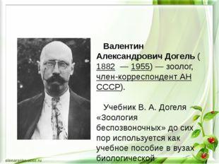 Валентин Александрович Догель ( 1882 — 1955)— зоолог, член-корреспондент А
