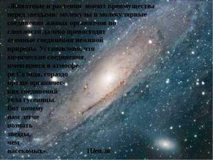 «Животные и растения имеют преимущества перед звездами: молекулы и молекуляр