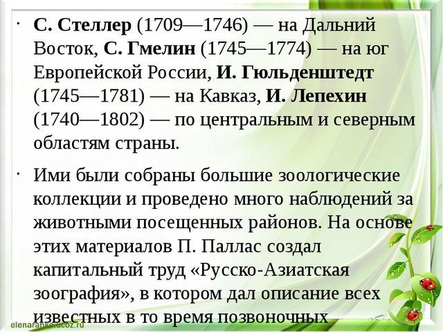 С. Стеллер (1709—1746) — на Дальний Восток, С. Гмелин (1745—1774) — на юг Ев...