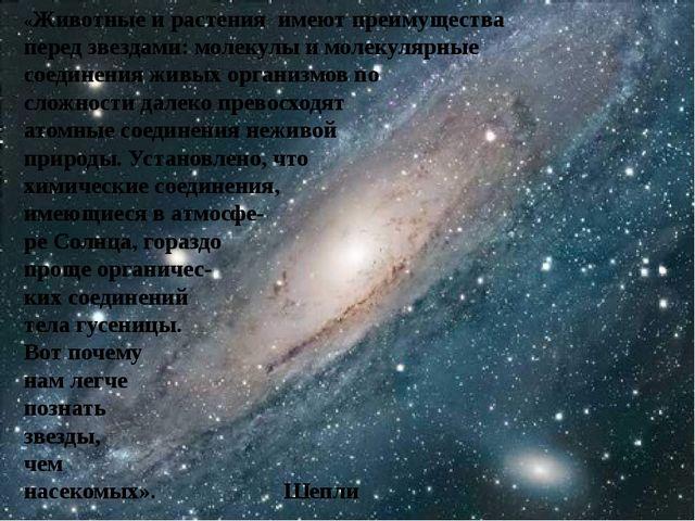 «Животные и растения имеют преимущества перед звездами: молекулы и молекуляр...