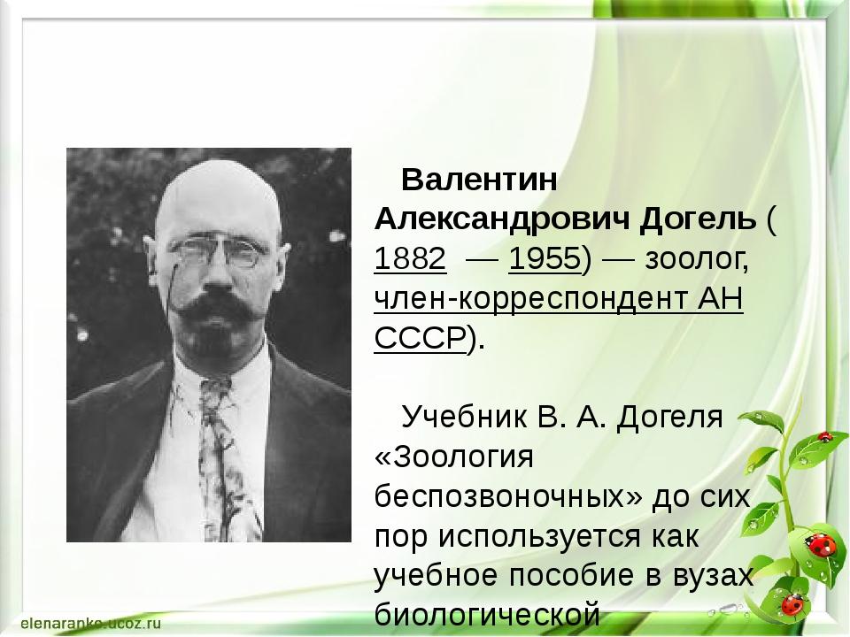 Валентин Александрович Догель ( 1882 — 1955)— зоолог, член-корреспондент А...