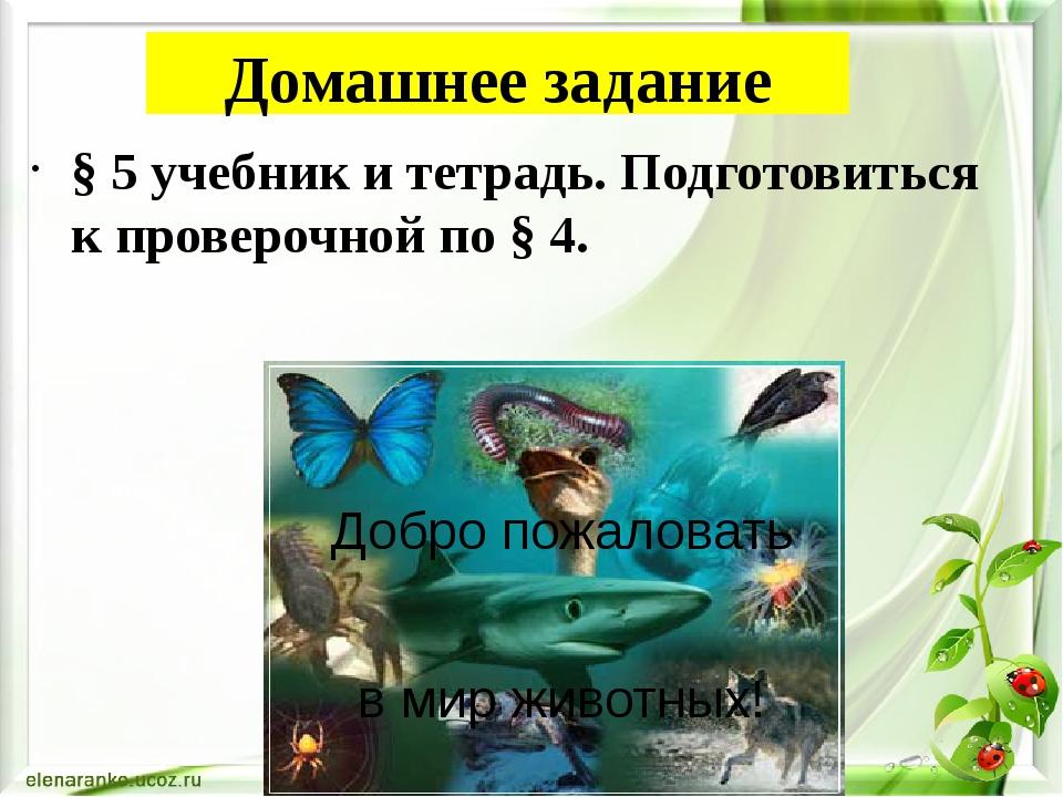 Домашнее задание § 5 учебник и тетрадь. Подготовиться к проверочной по § 4. Д...