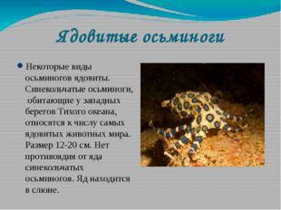 Ядовитые осьминоги Некоторые виды осьминогов ядовиты. Синекольчатые осьминоги