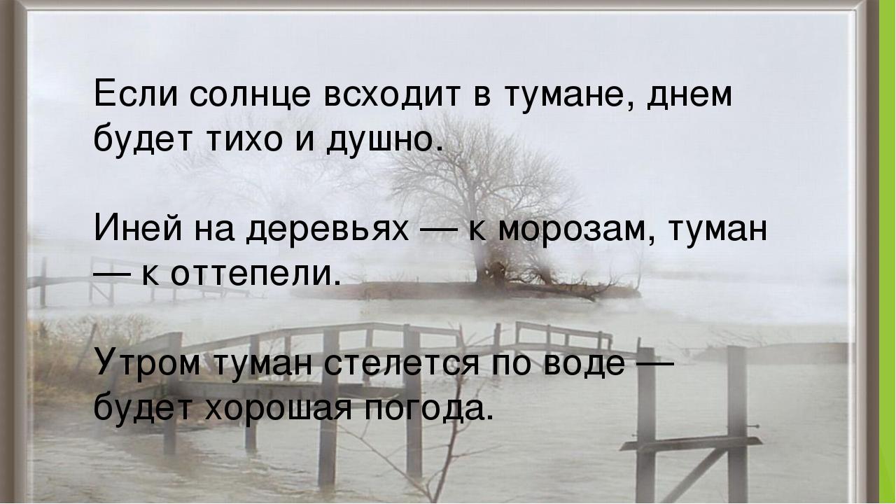 Если солнце всходит в тумане, днем будет тихо и душно. Иней на деревьях — к...