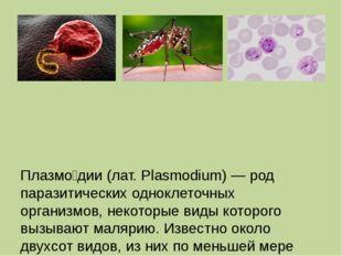 Плазмо́дии (лат. Plasmodium) — род паразитических одноклеточных организмов,
