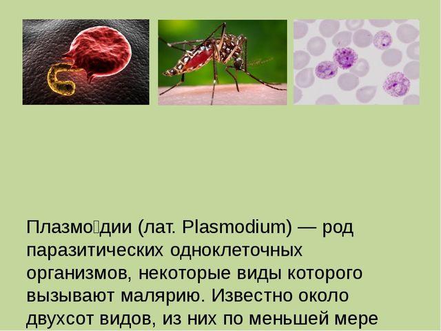 Плазмо́дии (лат. Plasmodium) — род паразитических одноклеточных организмов,...