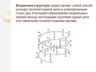 Вторичная структура представляет собой способ укладки полипептидной цепи в уп