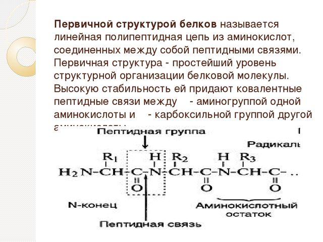 Первичной структурой белков называется линейная полипептидная цепь из аминоки...