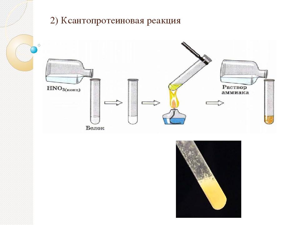 2) Ксантопротеиновая реакция