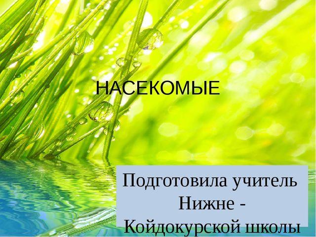 НАСЕКОМЫЕ Подготовила учитель Нижне - Койдокурской школы Хрущёва Светлана Его...