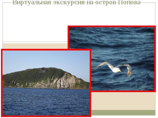 Виртуальная экскурсия на остров Попова