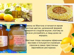 Лимоны из Мантона отличаются ярким желтым цветом, удлиненной формой, невероят