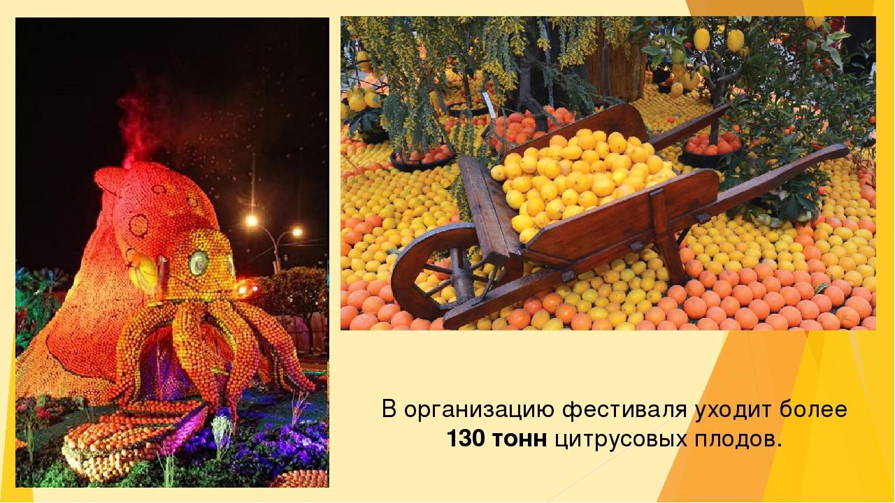 В организацию фестиваля уходит более 130 тонн цитрусовых плодов.