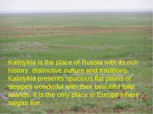 Kalmykia is the place of Russia with its rich history, distinctive culture an