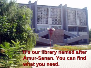 It's our library named after Amur-Sanan. You can find what you need.
