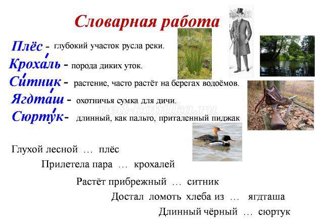 hello_html_7403a7ae.jpg
