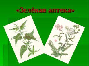 «Зелёная аптека»