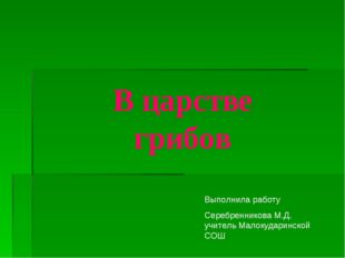 В царстве грибов Выполнила работу Серебренникова М.Д. учитель Малокударинской
