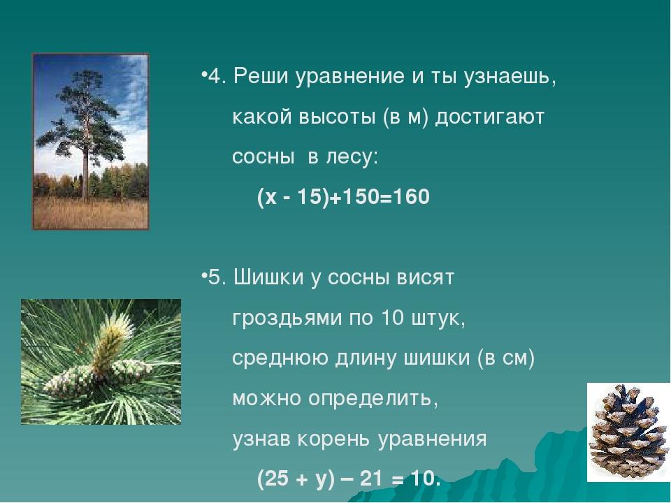 4. Реши уравнение и ты узнаешь, какой высоты достигают сосны в лесу. (х - 15)...