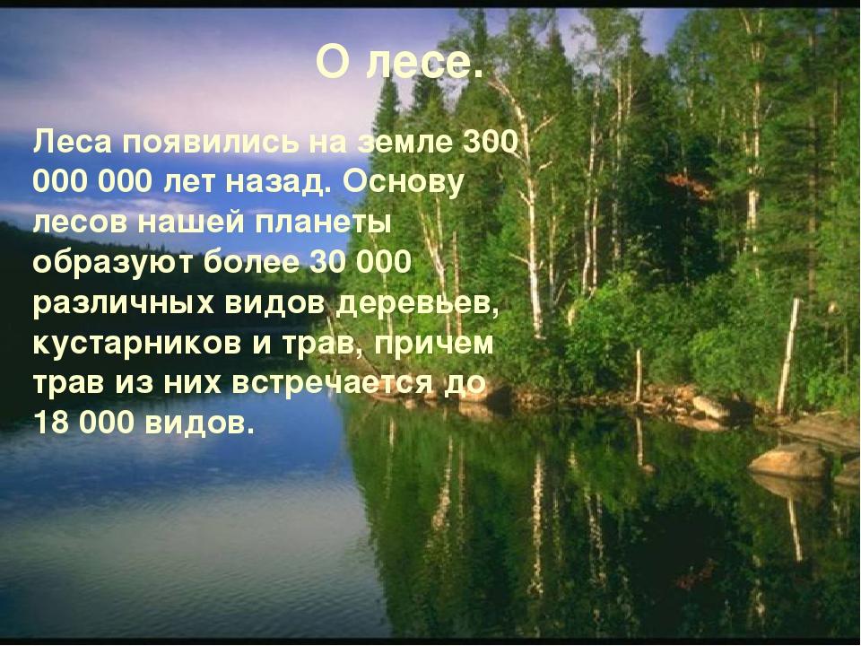 Леса появились на земле 300 000 000 лет назад. Основу лесов нашей планеты об...
