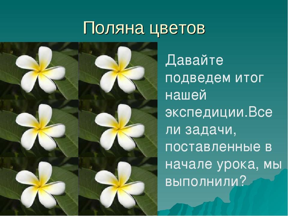 Поляна цветов Давайте подведем итог нашей экспедиции.Все ли задачи, поставлен...