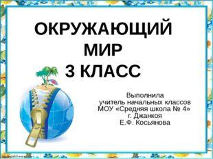 ОКРУЖАЮЩИЙ МИР 3 КЛАСС Выполнила учитель начальных классов МОУ «Средняя школа