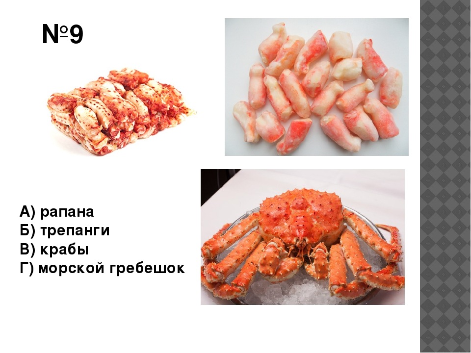 №9 А) рапана Б) трепанги В) крабы Г) морской гребешок