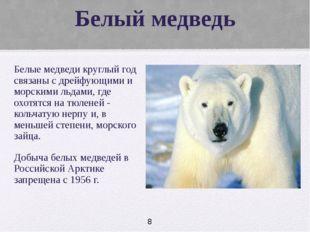 Белый медведь Белые медведи круглый год связаны с дрейфующими и морскими льд