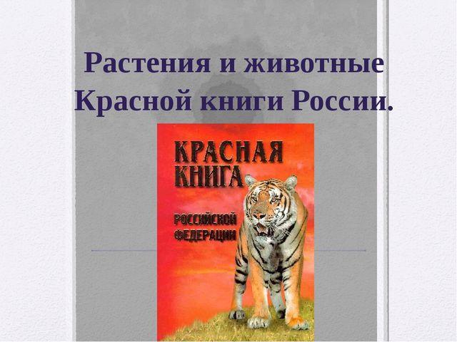 Растения и животные Красной книги России.