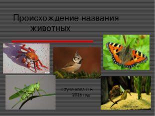 Происхождение названия животных Стученкова Л.Б. 2015 год