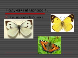 Подумайте! Вопрос 1. Кто назовёт бабочек?