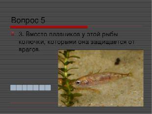 Вопрос 5 3. Вместо плавников у этой рыбы колючки, которыми она защищается от