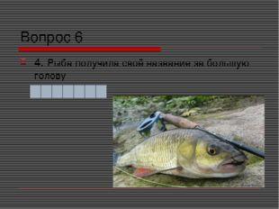 Вопрос 6 4. Рыба получила своё название за большую голову