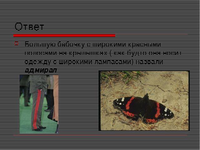 Ответ Большую бабочку с широкими красными полосами на крылышках ( как будто о...