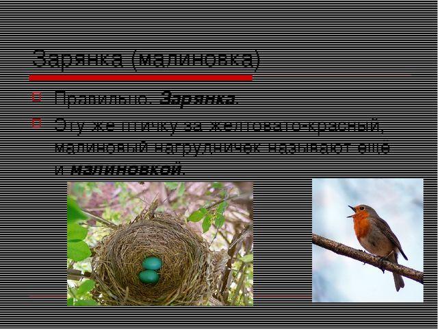 Зарянка (малиновка) Правильно. Зарянка. Эту же птичку за желтовато-красный, м...