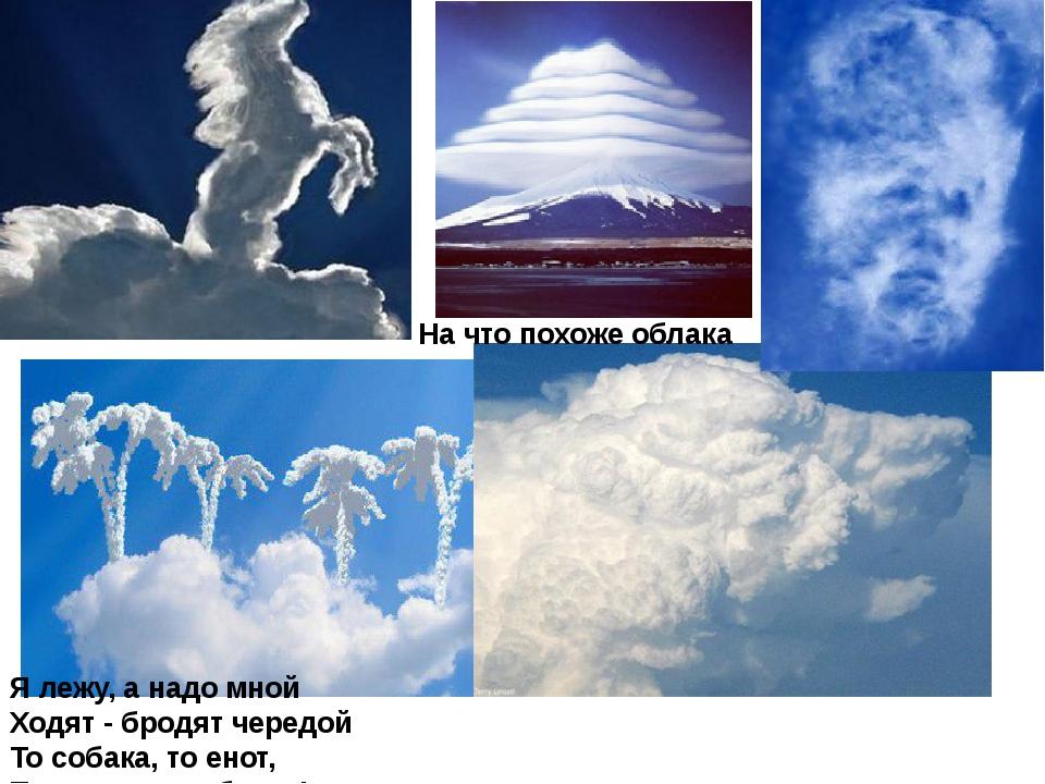 На что похоже облака Я лежу, а надо мной Ходят - бродят чередой То собака, то...