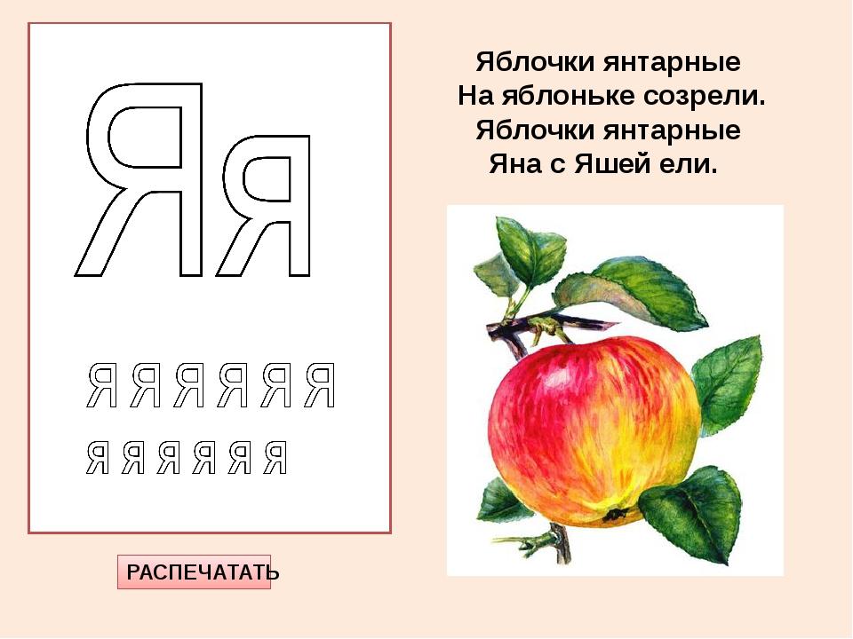 РАСПЕЧАТАТЬ Яблочки янтарные На яблоньке созрели. Яблочки янтарные Яна с Яшей...