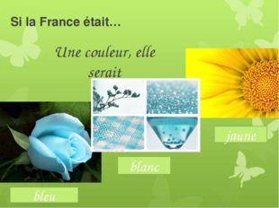 Si la France était… Une couleur, elle serait bleu jaune blanc