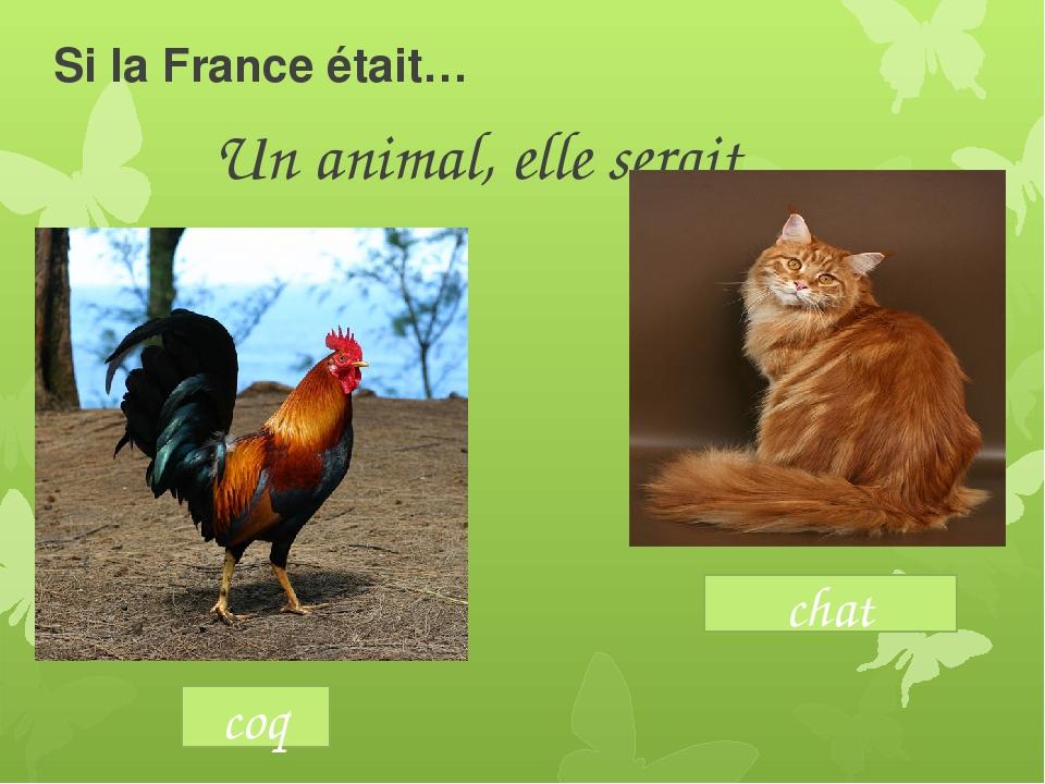 Si la France était… Un animal, elle serait coq chat