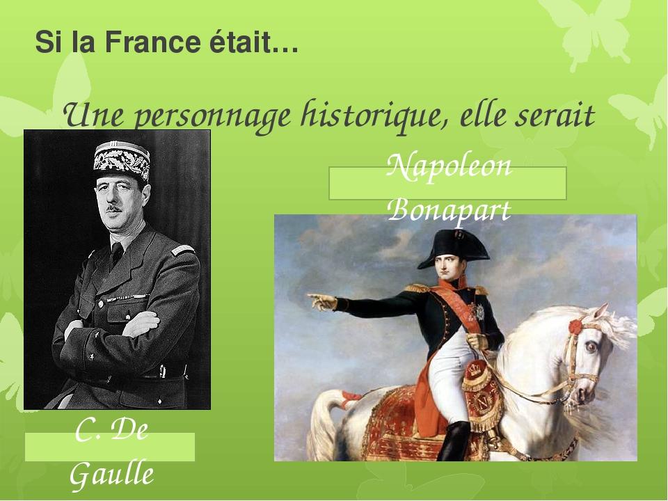 Si la France était… Une personnage historique, elle serait C. De Gaulle Napol...
