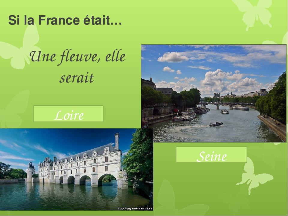 Si la France était… Une fleuve, elle serait Seine Loire