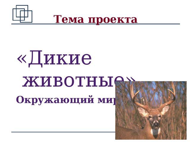 Тема проекта «Дикие животные» Окружающий мир - 1 класс *