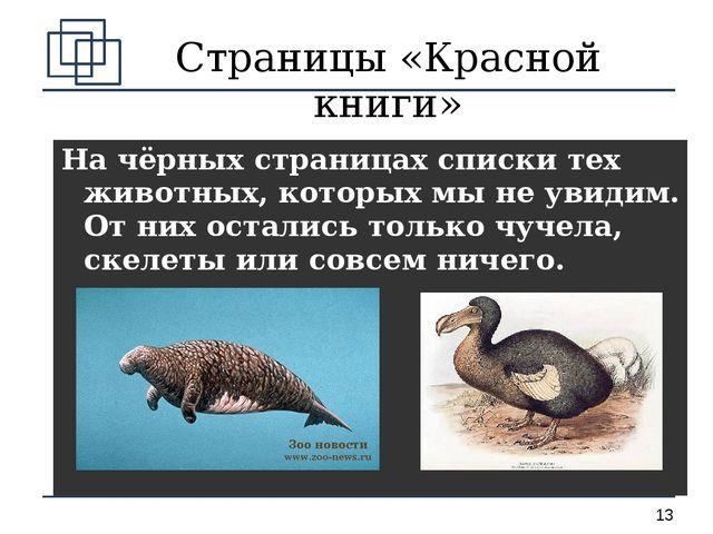 Страницы «Красной книги» На чёрных страницах списки тех животных, которых мы...