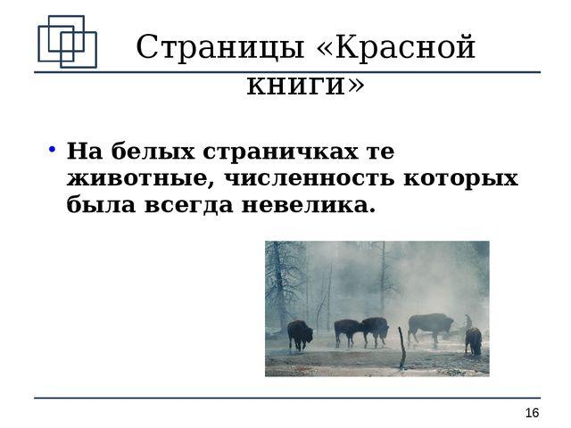 Страницы «Красной книги» На белых страничках те животные, численность которых...