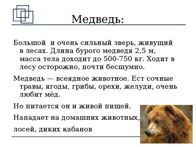 Медведь: Большой и очень сильный зверь, живущий в лесах. Длина бурого медведя...