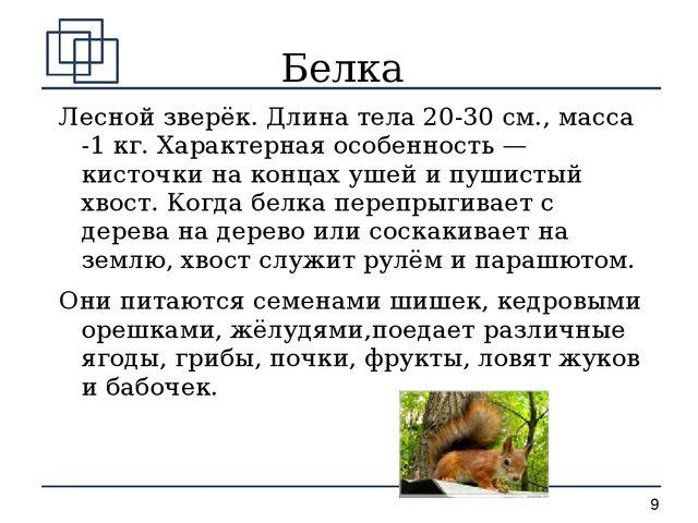 Белка Лесной зверёк. Длина тела 20-30 см., масса -1 кг. Характерная особеннос...