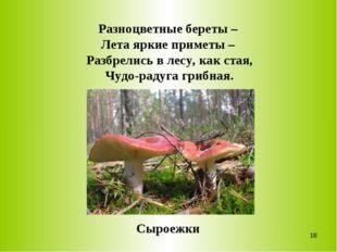 Разноцветные береты – Лета яркие приметы – Разбрелись в лесу, как стая, Чудо-